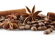 Closeup scattered coffee beans in line horizontal with anises and cinnamon sticks on white background